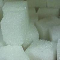 Zucker macht abhängig